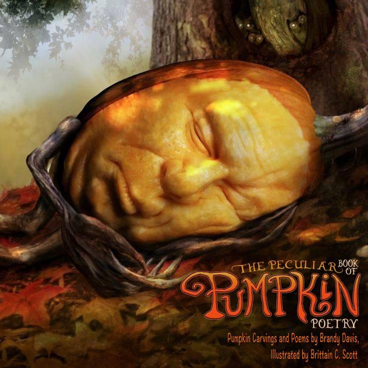 Sleeping Stan Logo Kickstarter